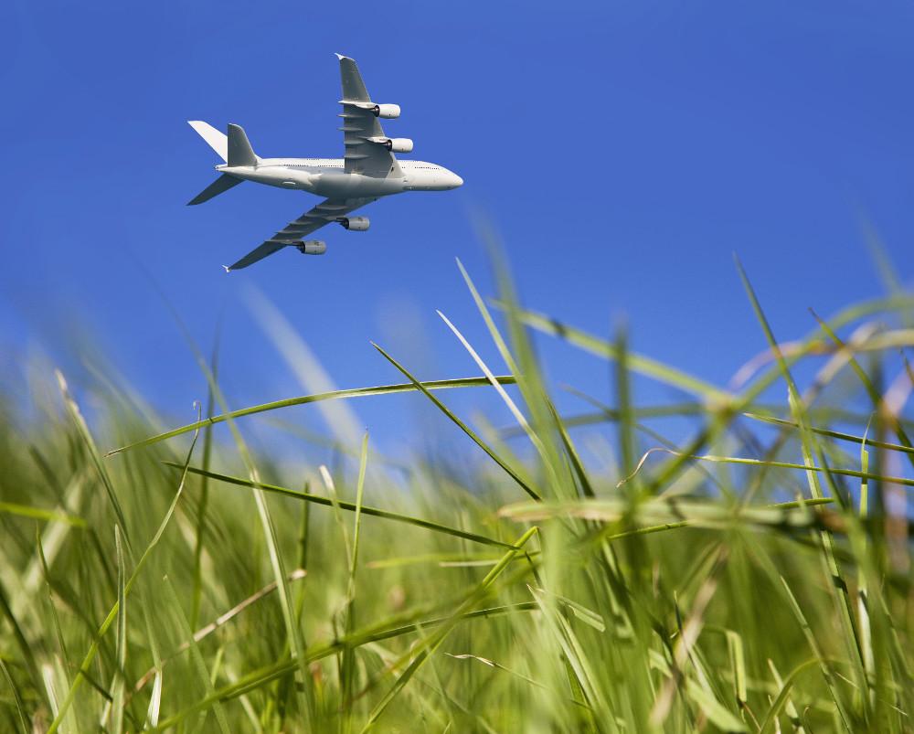 Airplane, Neste