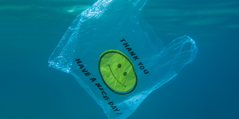Plastic bag in the water
