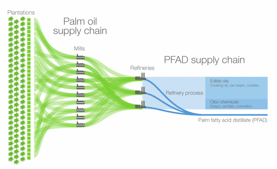 Palm oil and PFAD supply chain