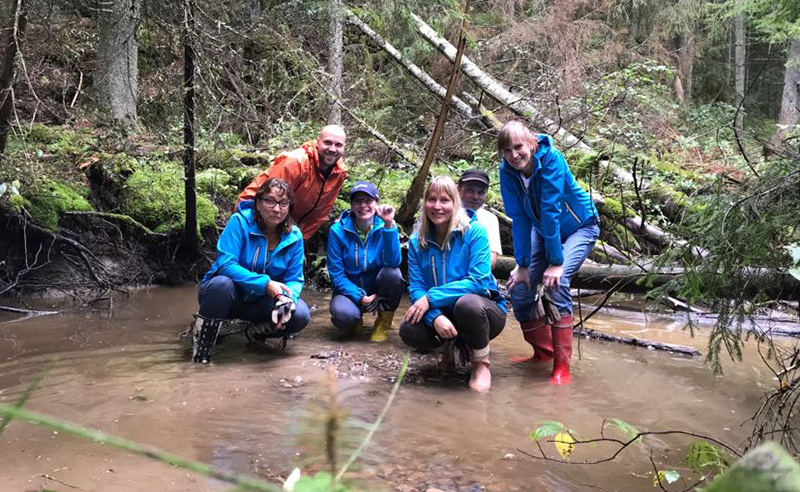 Neste Porvoo team spent half a day in Sipoonkorpi national park doing better breeding ground for trouts in the nearby small river.