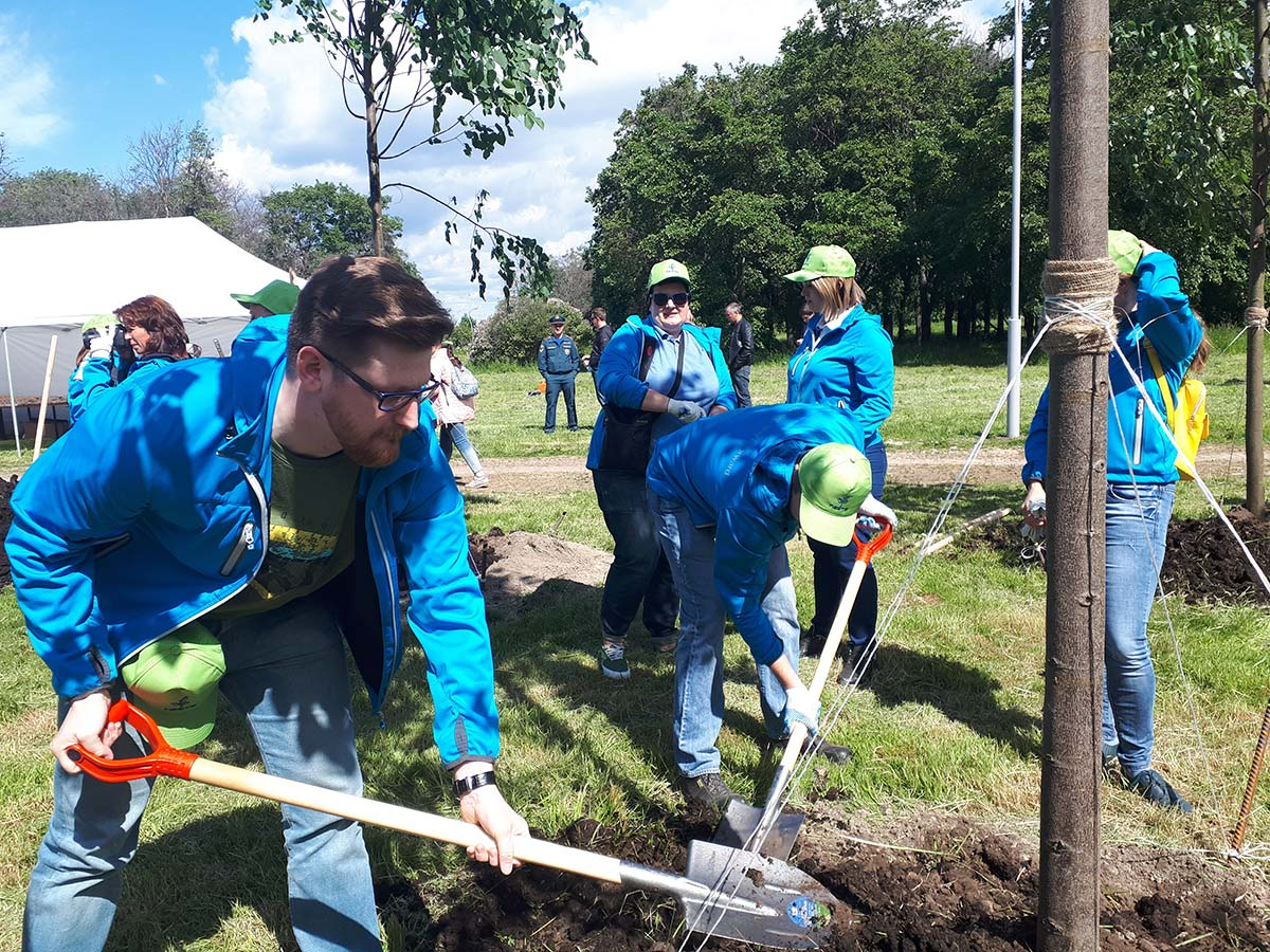 Neste volunteers planted trees.