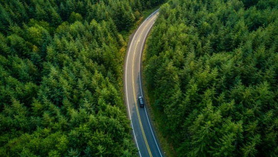 Car driving on a road in the forrest, view from top