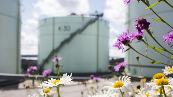 Neste has three business areas: Oil Products, Renewable Products and Oil Retail.