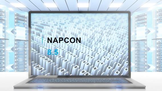 NAPCON Neste Solutions