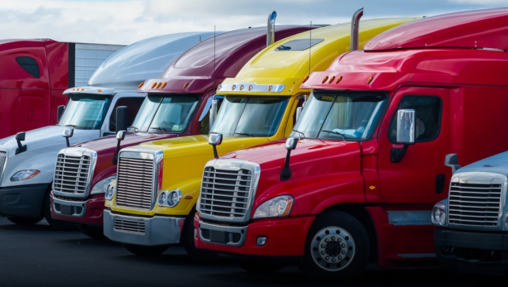 Transport companies engage customers with sustainability